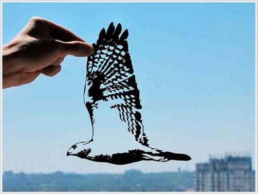 Creative Paper Cut Shapes