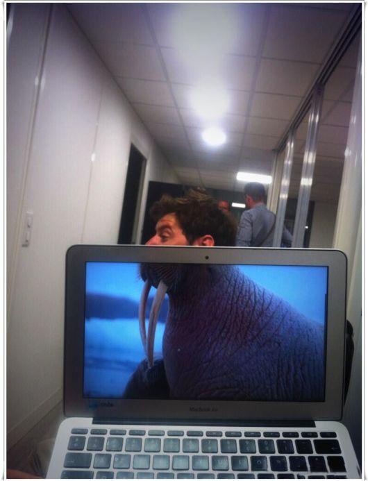 Funny Office Foto Bombing