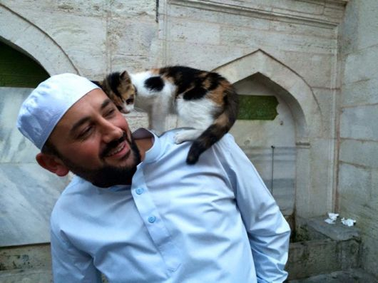 Kind Imam Opens Mosque's Doors For Stray Cats