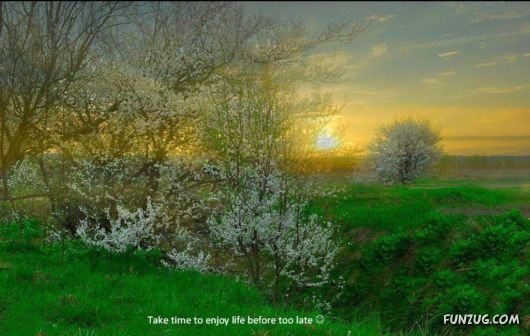 Take Time To Enjoy Life Before Its Too Late
