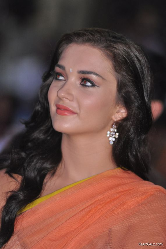 Amy Jackson At Thandavam Movie Audio Launch