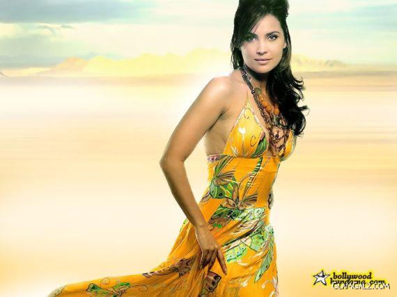Click to Enlarge - Beautiful Lara Dutta Wallpapers