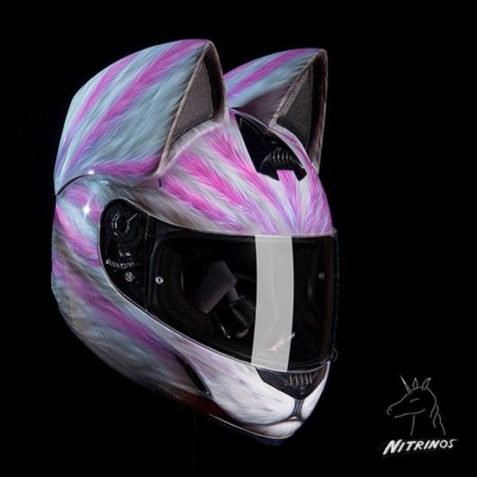 Awesome Cat Helmets With Ears